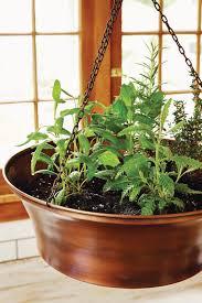 indoor kitchen gardening turn your home into a year round