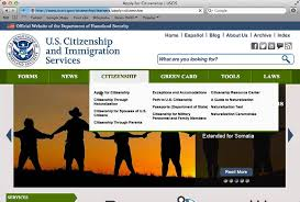 how to download the n 400 application for naturalization form