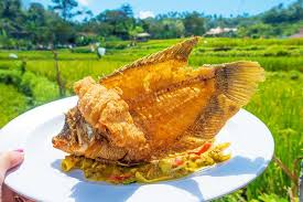 cuisine bali cuisine where to find the best food in bali kevin