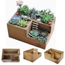 amazon com wooden succulent planter boxes for indoor house