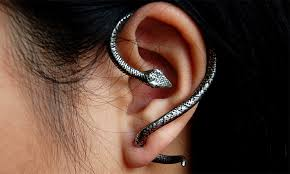 cool ear rings style pantry style find snake earrings