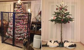 22 fed up owners who found clever ways to pet proof the christmas tree