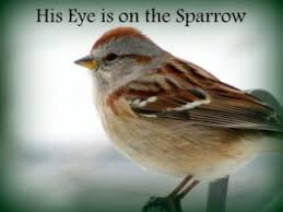 the church pianist archive update his eye is on the sparrow