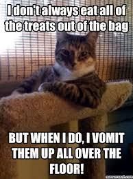Vomit Meme - kitty