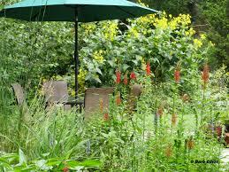 wildlife gardening backyardsfornature org
