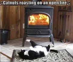 Fireplace Meme - christmas cat memes janet carr