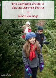 christmas tree farm new jersey home decorating interior design