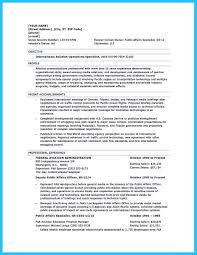 Resume Sample Attorney by Personal Injury Attorney Resume Keywords For Government 100 Best