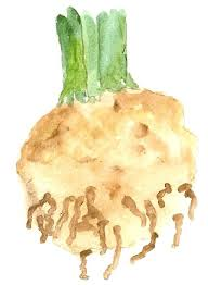 our third thirds invasion of the vegetables 2