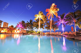palm trees reflect in a swimming pool at night time stock photo