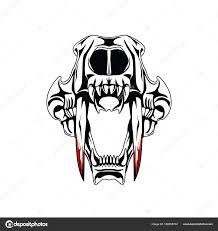 saber tooth tiger skull stock photo doddy77 182858702