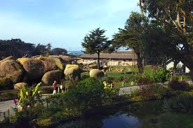 Botanical Gardens Ticket Prices San Francisco Zoo Tickets Hours