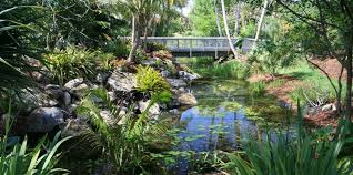 Largest Botanical Garden Mounts Botanical Garden Of Palm County American
