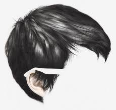 drawing of bob hair drawn hair pixie pencil and in color drawn hair pixie