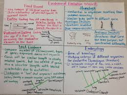 evidence of evolution biology glad anchor chart biology glad