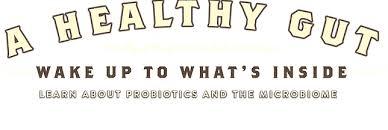 probiotics fermented foods farmhouse culture