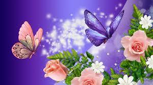 nature flower wallpaper hd for desktop free flowers high quality