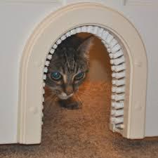 cat running into glass door cat gates doors u0026 enclosures petco
