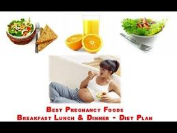 pregnancy food monthly diet plan youtube