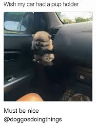 Nice Car Meme - wish my car had a pup holder must be nice cars meme on sizzle
