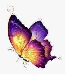 butterfly png images 28 264 png resources with transparent