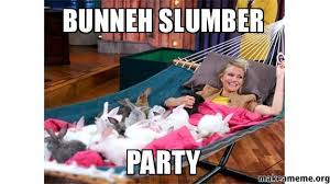 Slumber Party Meme - bunneh slumber party make a meme
