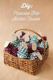 Pine Cone Home Decor Diy Pinecone Fire Starter Favors By Jen Carreiro Project Home