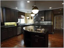 best kitchen paint colors with dark cabinets everdayentropy com