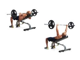 100 incline bench kingace gym equipment hammer strength