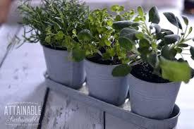 window herb gardens windowsill herb planter incredible indoor windowsill herb garden