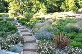 Maintenance Free Garden Ideas Maintenance Free Yard Ideas Low Maintenance Front Yard
