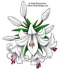 best 25 lily flower tattoos ideas on pinterest lilly flower