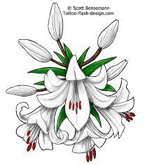 best 25 lily flower tattoos ideas on pinterest lilly flower