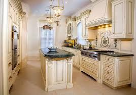 Traditional Kitchen Designs by Kitchen Inspiring Luxurious Hood Design Kitchens Ideas Luxury