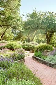 Pretty Backyard Ideas Landscaping Backyard Landscape Design With Plants And Big Trees