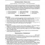 Executive Resume Template Word 81 Marvelous Free Resume Template Words