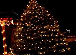 traditional tree lights fia uimp