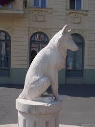 file white wolf statue fő sq gyöngyös hungary jpg