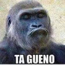 Buenos Memes En Espaã Ol - si ome ta bueno meme risa jaja chango memes pinterest meme