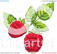 clipart of cartoon raspberries and leaves royalty free vector