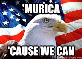 America Eagle Meme - murica cause we can american eagle and flag quickmeme