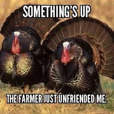 Best Thanksgiving Memes - thanksgiving meme 2017 funny thanksgiving memes