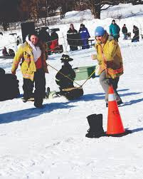 Lots Of Fun Meaning Lots Of Snow And Sunshine Contribute To Snowfest Family Day Fun