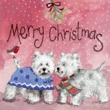 west highland white terrier greetings cards for every occasion