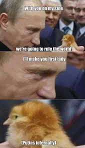 New Meme Order - world order intensifies