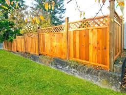 Ideas For Backyard Privacy Decorating Cheap Privacy Fence Ideas For Backyard Wooden Lattice