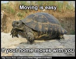 Moving In Together Meme - fresh moving in together meme 11 best images about moving memes on