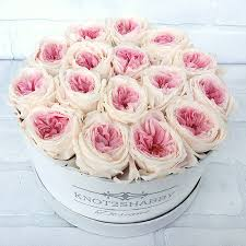 boxed roses knot2shabbydesigns two toned boxed preserved roses roses that last