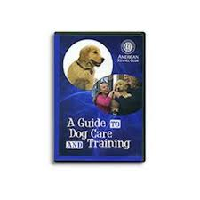 a guide to dog care and training dvd akc shop
