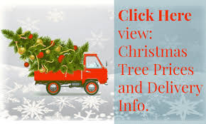 christmas tree delivery christmas trees lots delivered heinies market in fresh